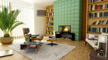 Grote kamerplant in de woonkamer